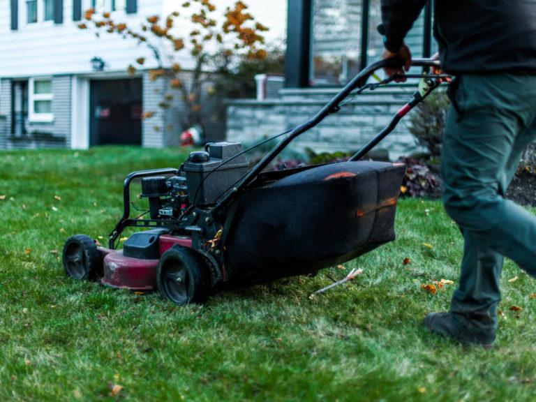 Gartenpflege - Pflege der Außenanlage